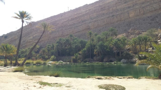 The amazing nature of Wadi Bani Khaled and the palm trees surrounding the water