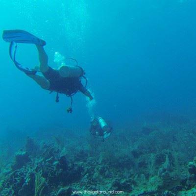 Diving In Khasab Sea Safari