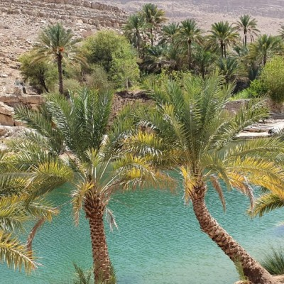 Wadi Alarabieen Day tour